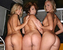 three-asses-in-bus