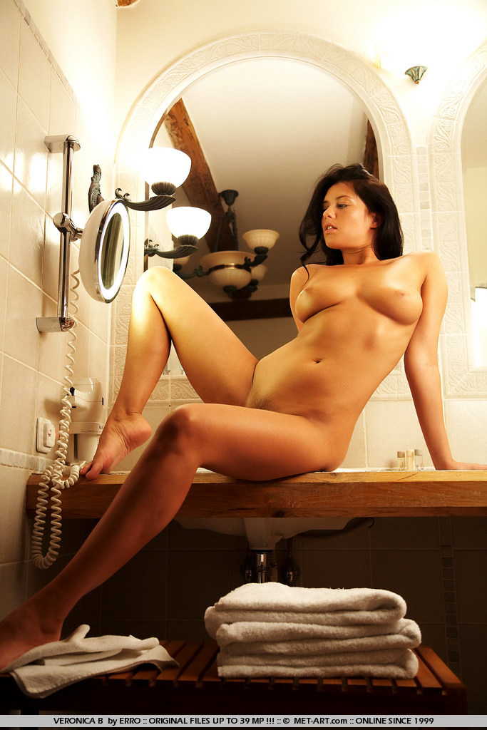 veronica-b-bathroom-met-art-10