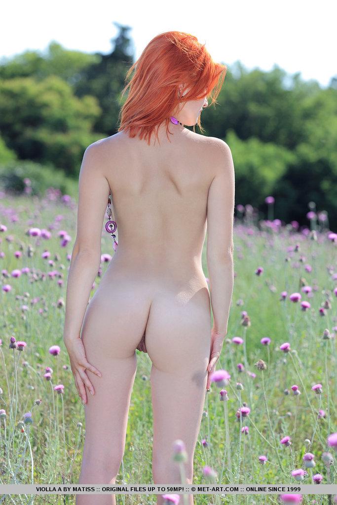violla-in-meadow-04