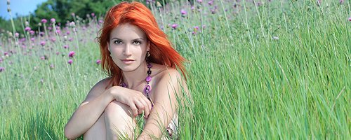 Violla on meadow