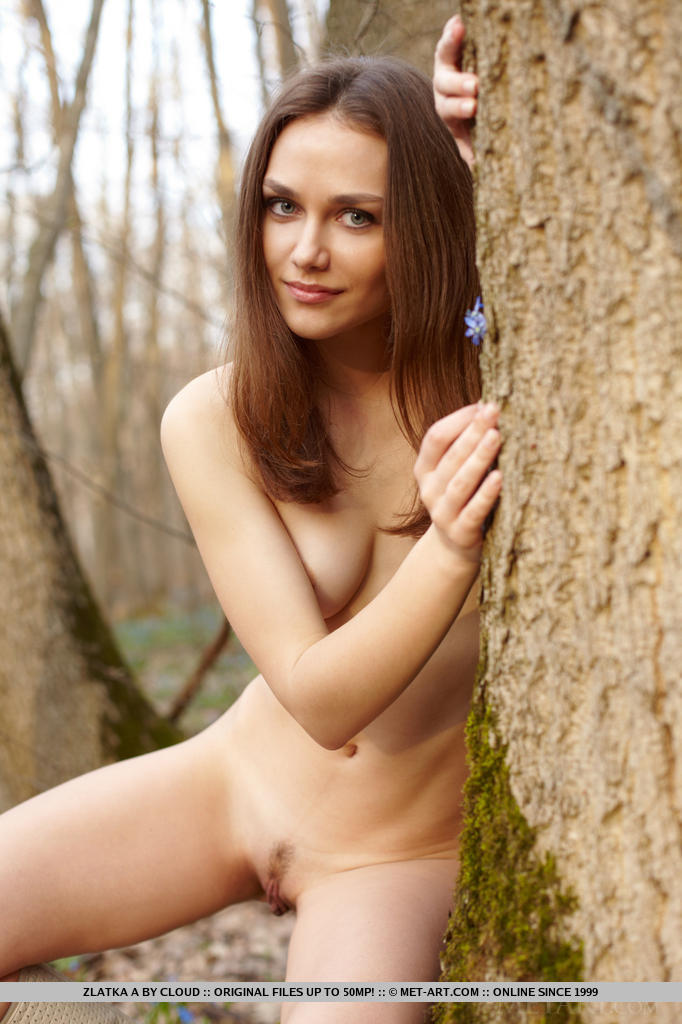 zlatka-a-nude-forest-metart-14