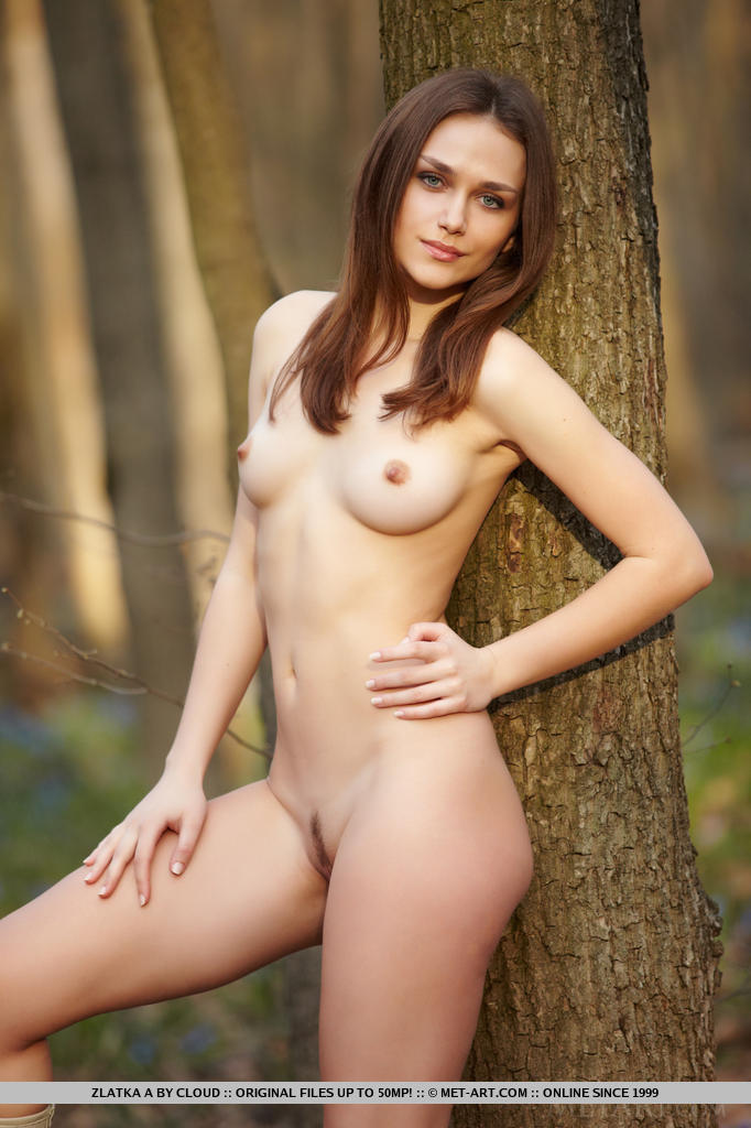 zlatka-a-nude-forest-metart-17
