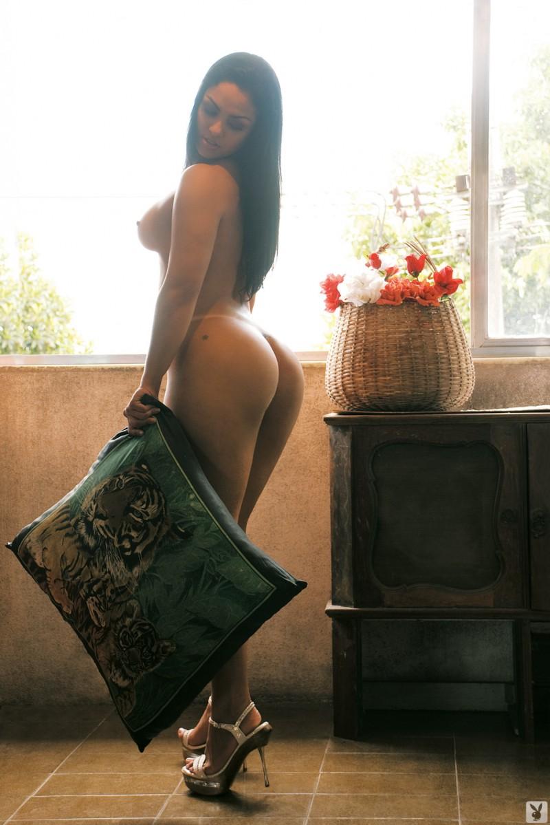 Andressa Soares Fotos Playboy latin goddess andressa soares - redbust