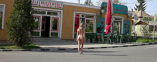 Nude in roadside bar