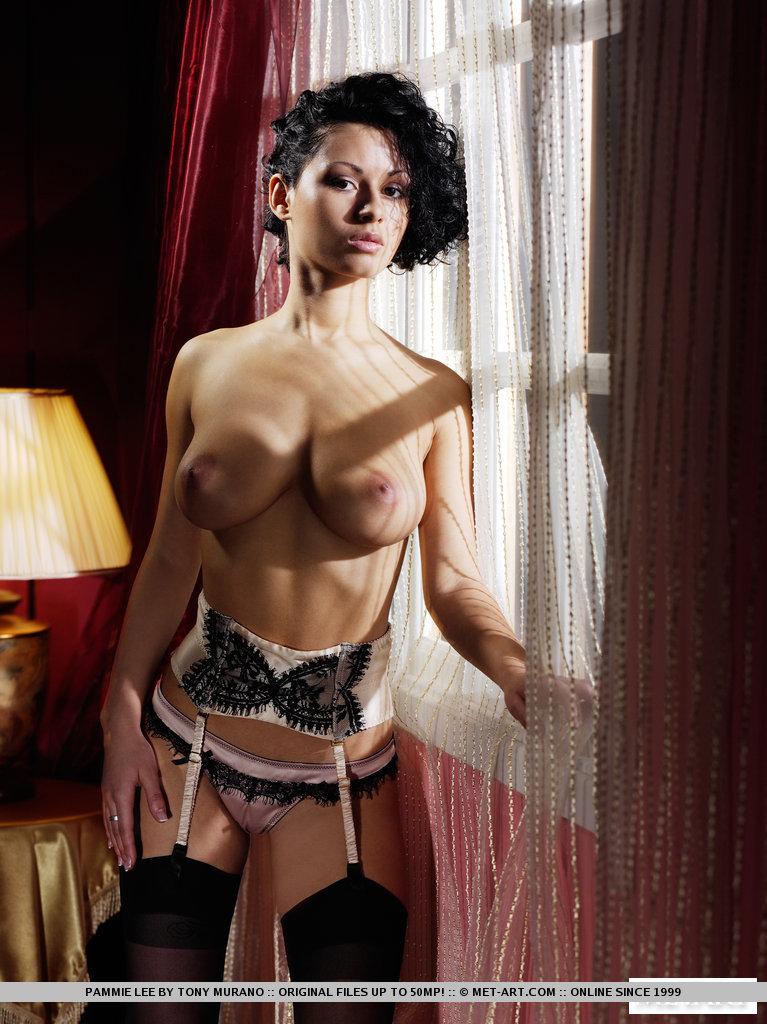 pammie-lee-lingerie-met-art-04
