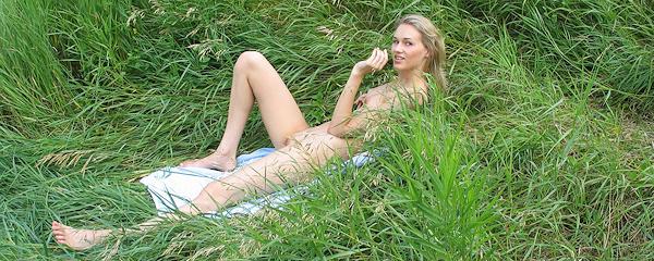 Wild Eva on the meadow