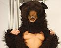 Sexy bear